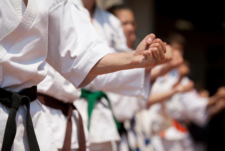 تصویر در تمدید مهلت ثبت نام کارگاه دانش افزایی مجازی کاراته