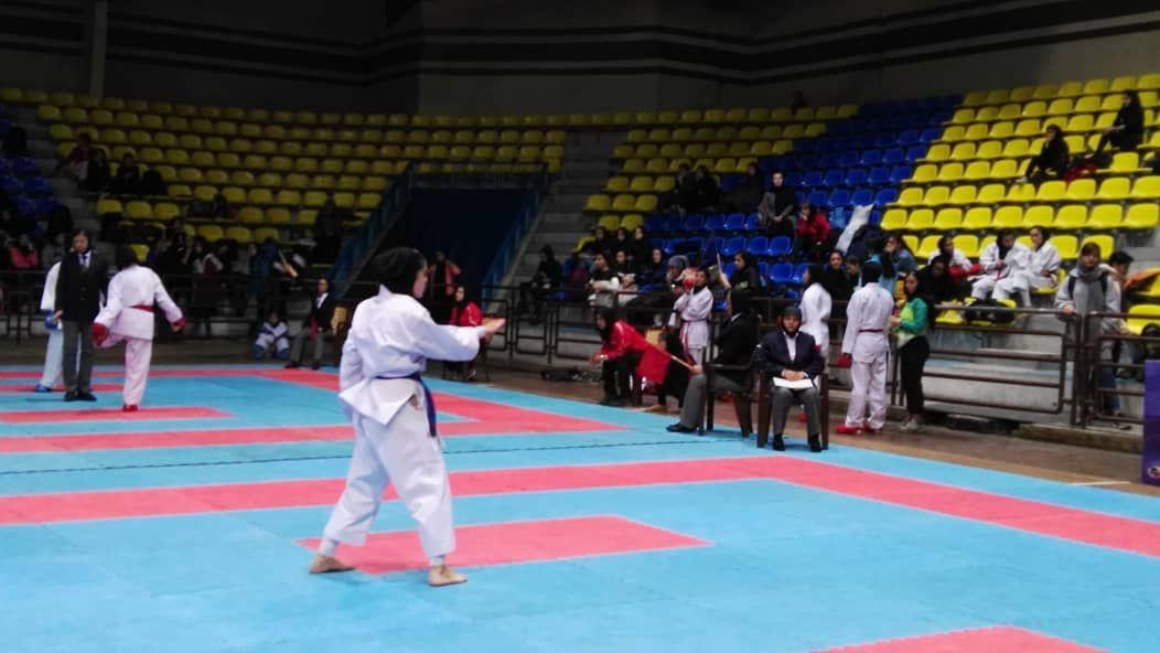 تصویر در افتخار آفرینی کاراته کاهای استان یزد در رقابتهای مجازی اوراآسیایی سبک شیتوریو